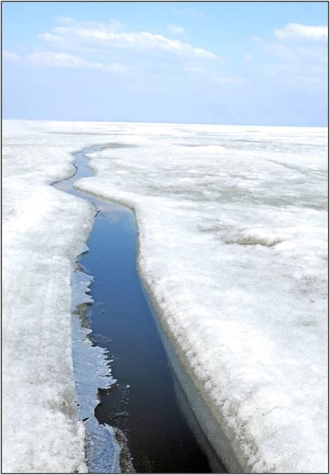 Arctic Deep Draft Port Evaluation - alaska.edu